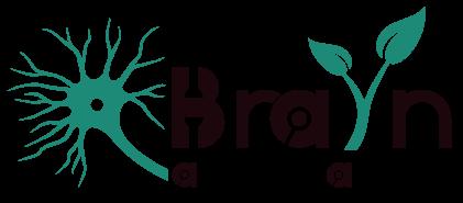 BraYn Association